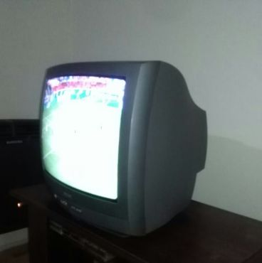 Vendo TV Philips 20 pulgadas